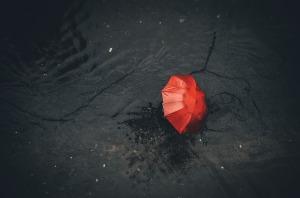rain-4421893_1920