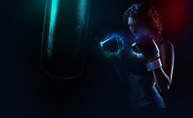 boxer-1984344_1920.jpg